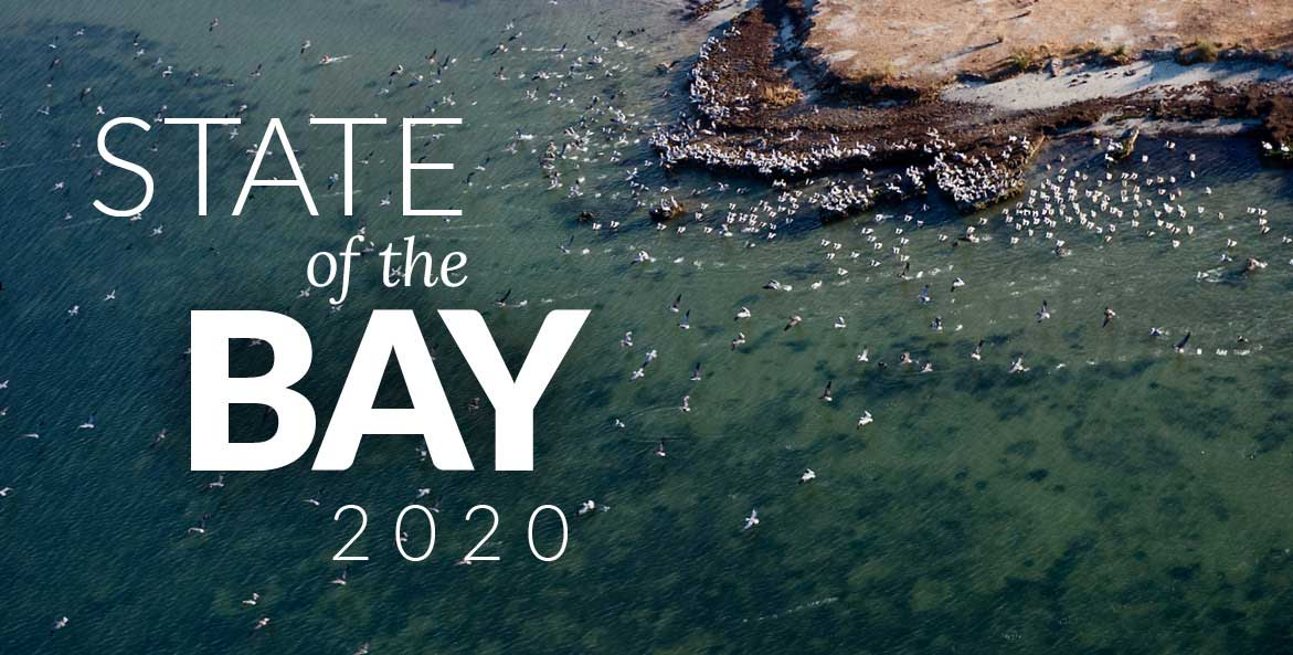 2020 State of the Bay
