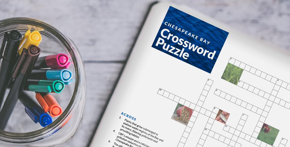 Chesapeake Bay Crossword Puzzle