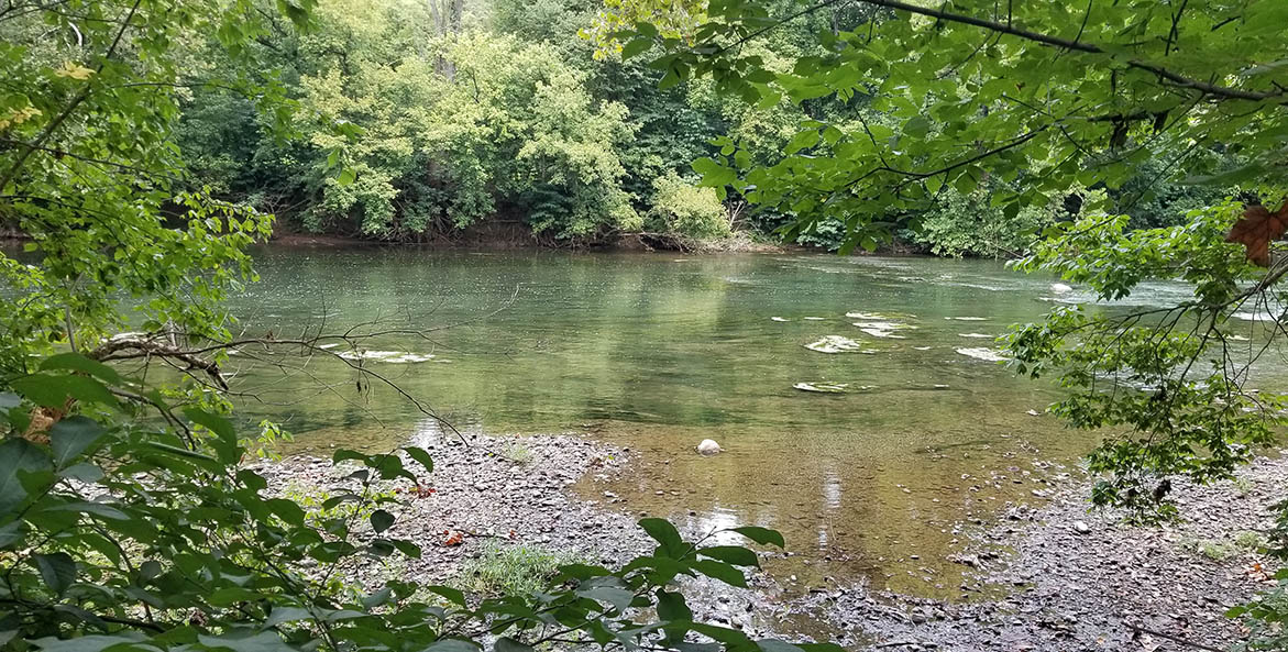 algal-bloom-Shenandoah-North-Fork_Matt-Kowalski_1171x593