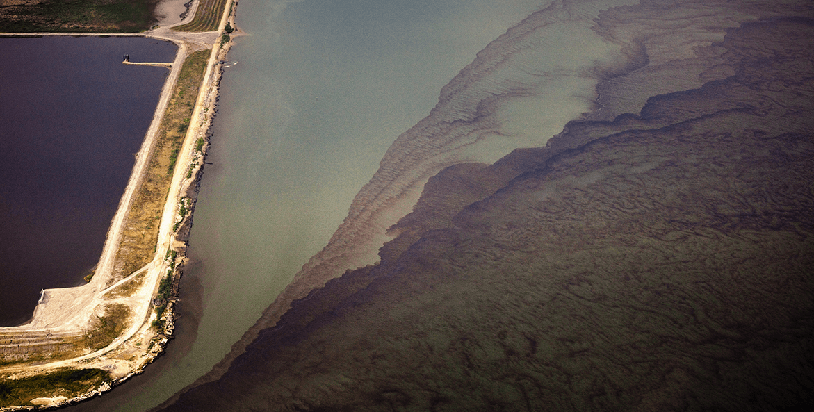 Algal Blooms_cr Morgan Heim-iLCP_1171x593