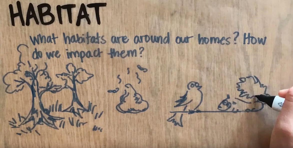 A hand draws information about habitat, including trees, poop, a bird, and a squirrel.