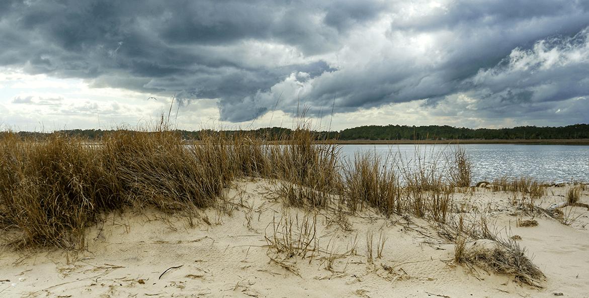 bethel beach-bob diller-1171x593