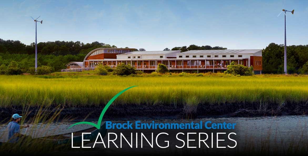 Brock Learning Series Web Hero 1171x593