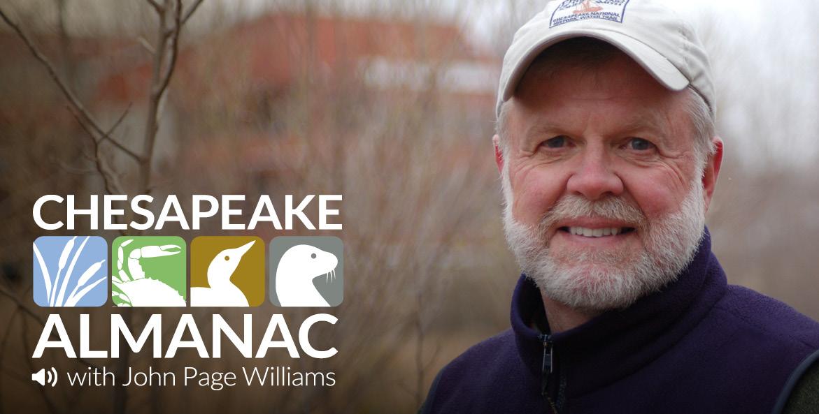 Chesapeake Almanac