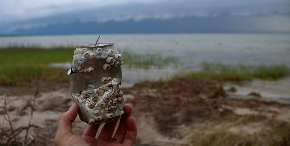 A hand holding a metal can with barnacles attached to it. There are wetlands in the background.