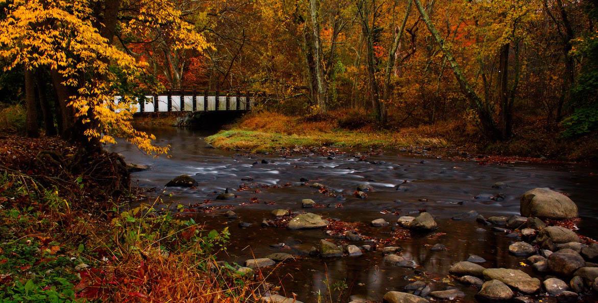 fall leaves river-BenjaminHoffman-1171x593