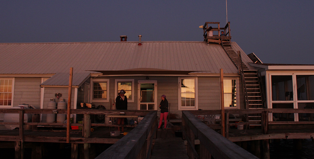 People stand on the docks in front of the Fox Island Environmental Education Center at evening.
