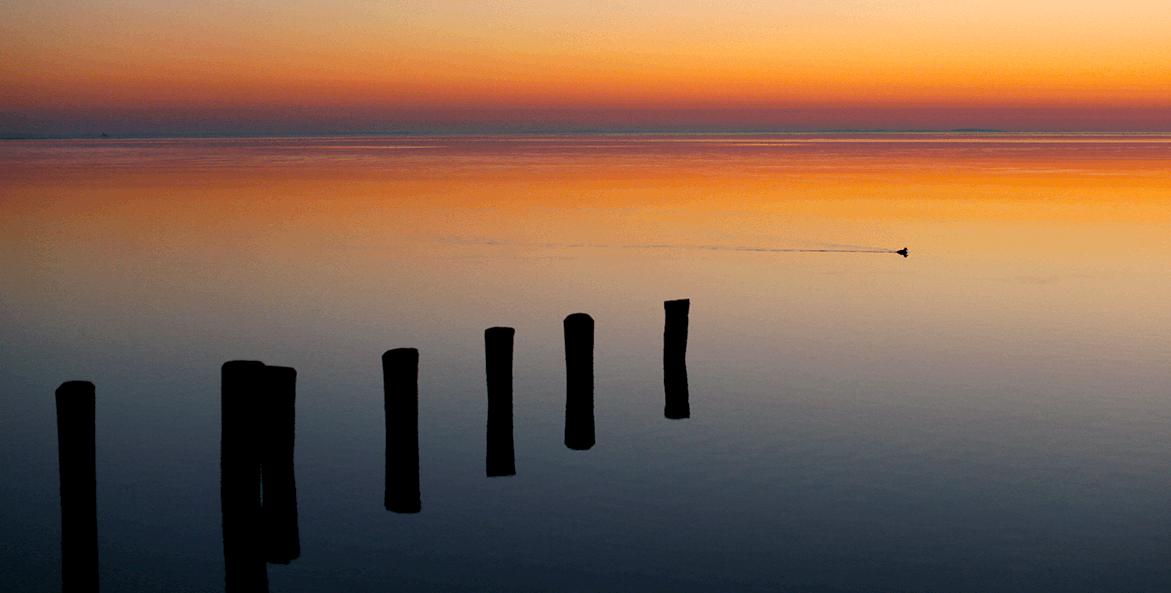 January sunrise-Sheri Hill-1171x593