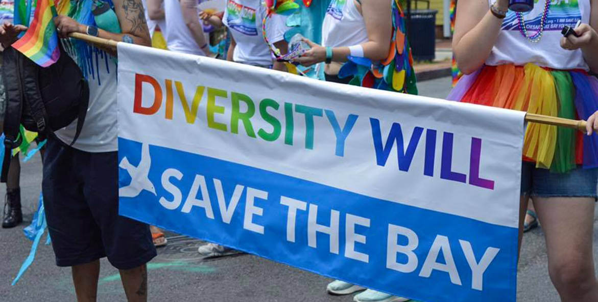 pride-diversity-will-save-the-bay.jpg