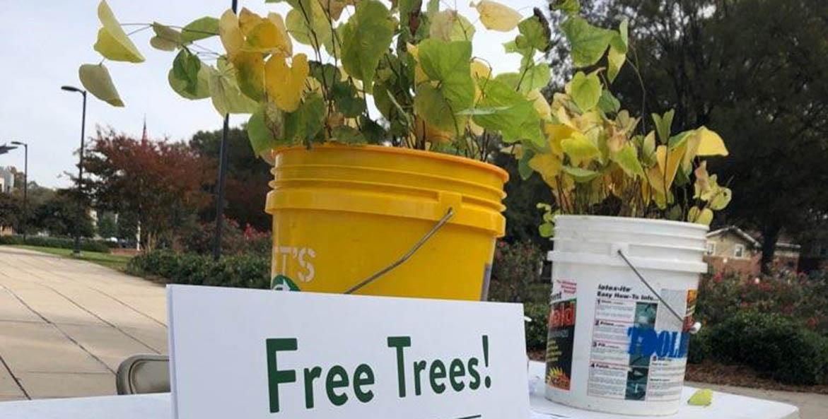 Richmond Tree Committee_Free Trees Sign_Daniel-Klein