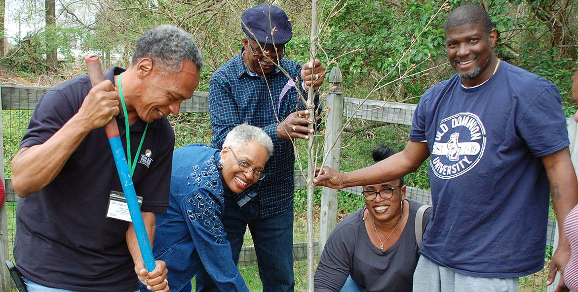 Five men and women help plant a tree.