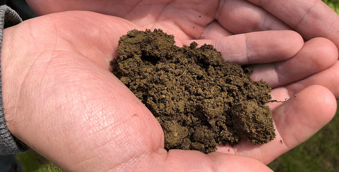 A hand hold a small pile of soil.