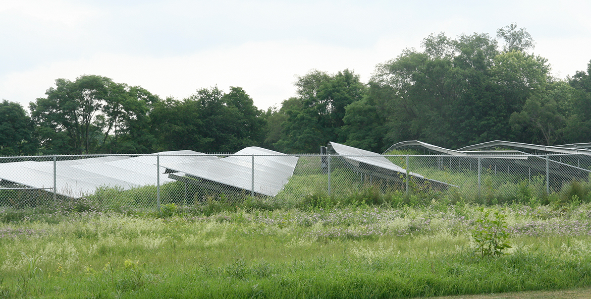 Solar panels in a field at GIANT's headquarters in Pennsylvania.