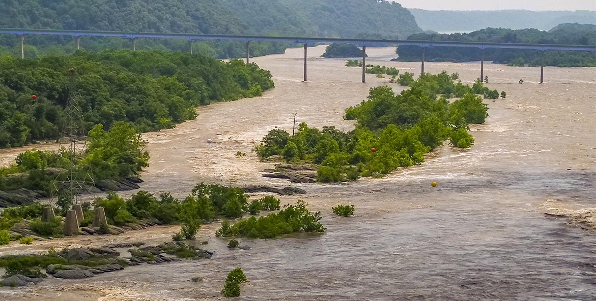 A muddy river rushes over partially submerged trees and islands and flows under a railroad bridge.