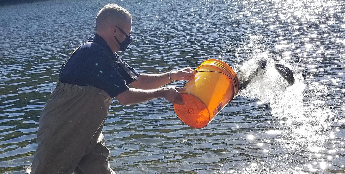 trout-bucket-release_tim-schaeffer_at-letterkenny_bj-small_2020-10