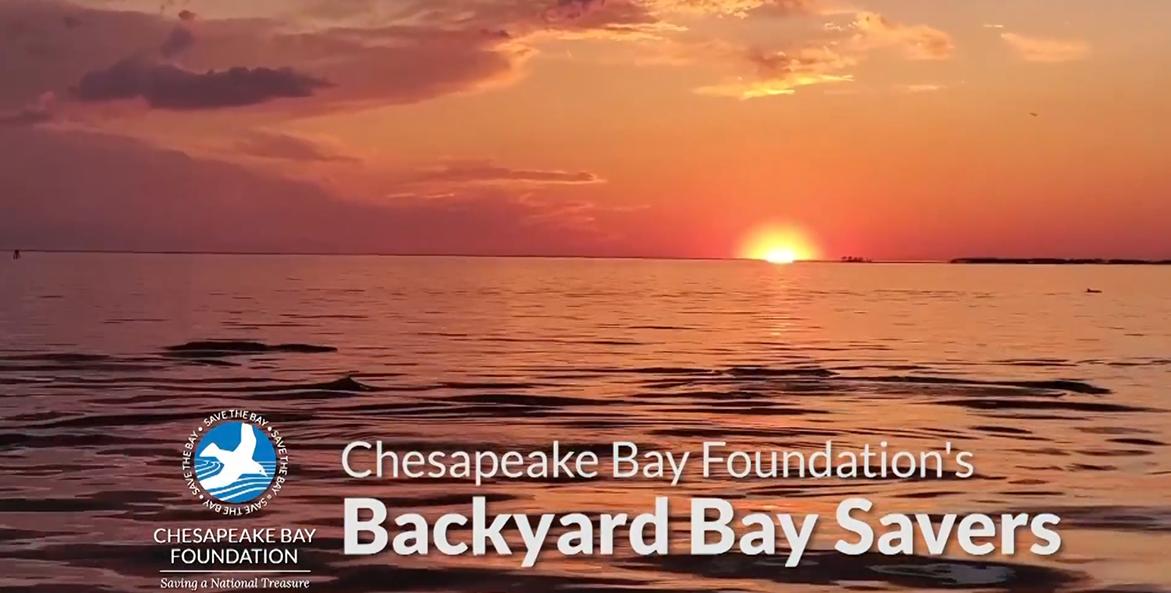 CBF's Backyard Bay Savers