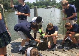 Seventh-graders clean their oysters on a dock.