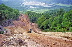 A bulldozer sits in the middle of a wide swath of dirt cutting through a thick forest.