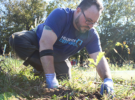 Man plants oak tree seedling in pasture.