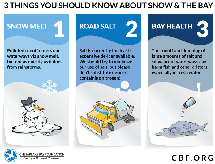Graphic: 1 (showing melting snowman) Snow Melt: Polluted runoff enters our water ways via snow melt, but not as quickly as it does from rainstorms. 2 (showing snow plow) Road Salt: Salt is currently the least expensive and most efficient de-icer available for municipal use. 3 (image of salt being poured on a dead fish) Bay Health: Large amounts of salt can disrupt the balance in our water ways. It is better to let salted snow melt on land for a more gradual influx.