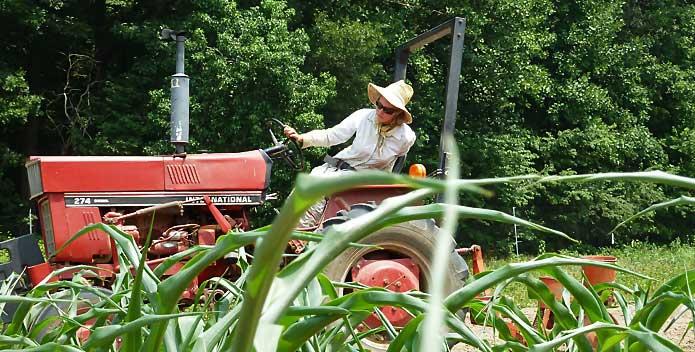 Anna-seeding-beans-5_clagett-farm_Carrie-Vaughn_695x352.jpg