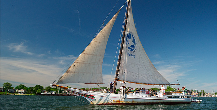 DSC_5798_skipjack-Stanley-Norman_May-2012_copyright-Bill-Portlock-695x352