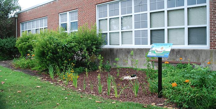 Rain garden planted at Armstrong Elementary School in Hampton, Virginia.