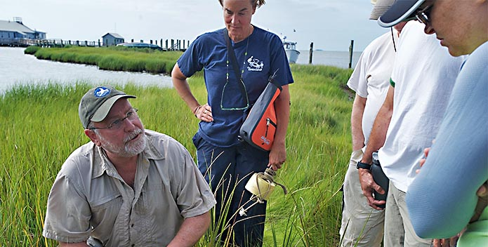 Bill Portlock and students stand in the grasses of Fox Island as they discuss the local ecosystem.