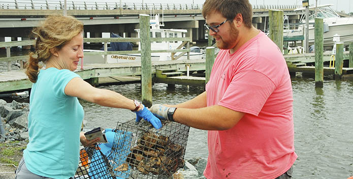 A CBF staffer passes a growing kit to a new oyster gardener Kenny Fletcher 695x352