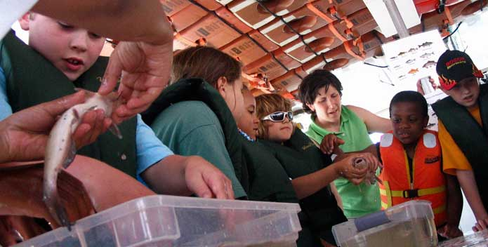 Students examine fish caught during a CBF education program.