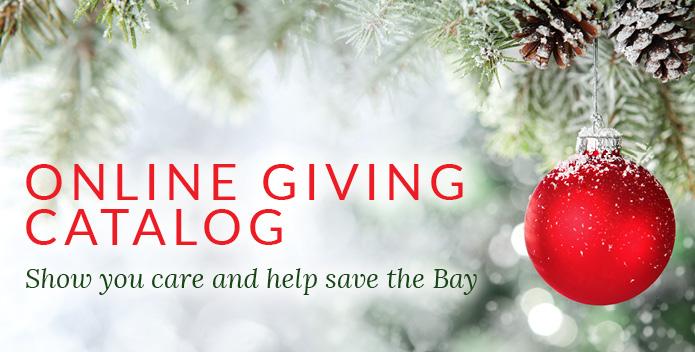Giving Catalog Holiday Header Image-695x352