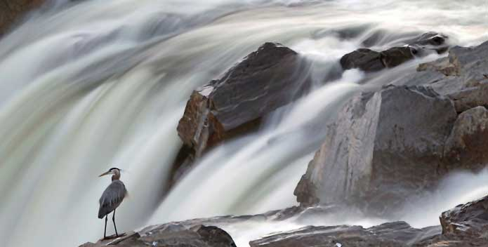 great-falls-MikeLeonard_695x352.jpg