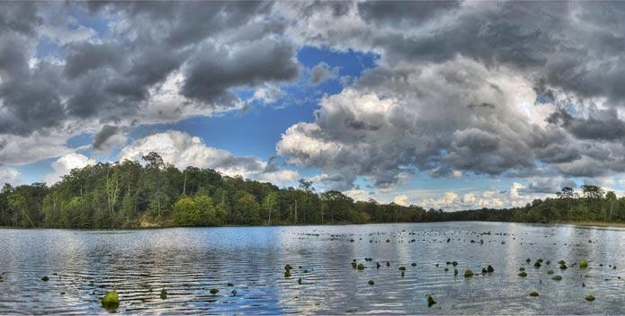 kanes-creek-ckoberg-mason-neck-state-park-destination-chesapeake.jpg