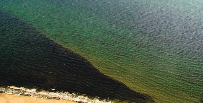 mahogany tide