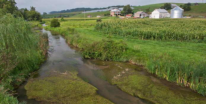 Mossy Creek VA 695x352