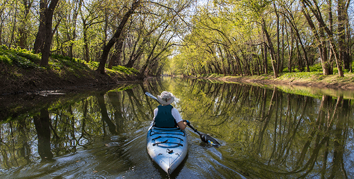 A man in a blue kayak paddles down a river with a canopy of trees.