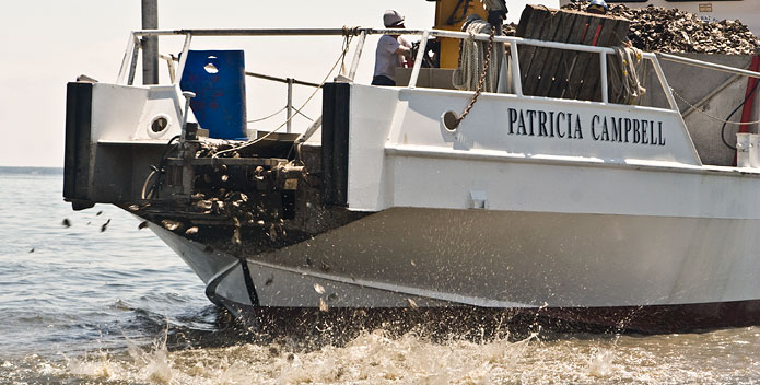 Photo of the Patricia Campbell distributing oysters onto an oyster reef.