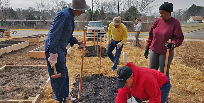 Four people prepare new plots for planting trees in an open lot.
