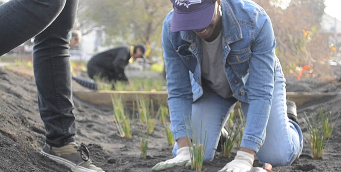 A woman digs into the dirt and helps plant a community garden at a church.