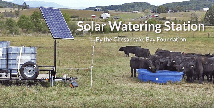 Cattle gather around a drinking trough on one side of a field. Gray water tanks, a pump, and a solar panel mounted on a trailer sit nearby.