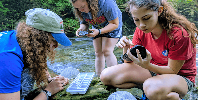 Three female students investigate rock and water samples at a stream.
