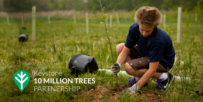 Tree Campaign Standard Image 695x352