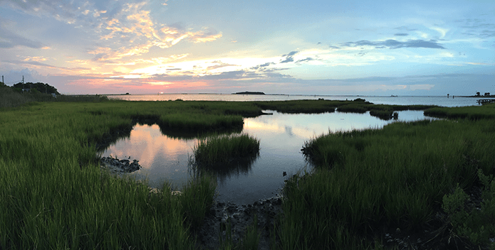 wetland sunset-david nyweide-695x352
