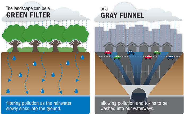 Graphic showing the landscape can be a green filter filtering pollution as the rainwater slowly sinks into the ground or a gray funnel, allowing pollution and toxins to be washed into our waterways.