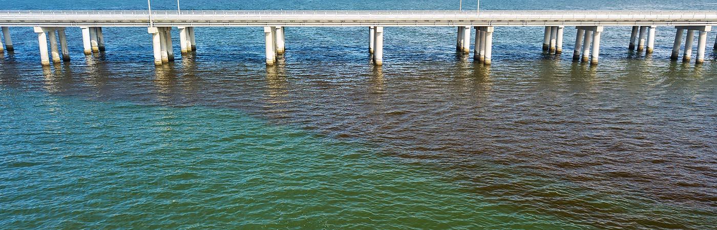 An algal bloom spreads a dark maroon stain across the clearer green-blue waters underneath a bridge.