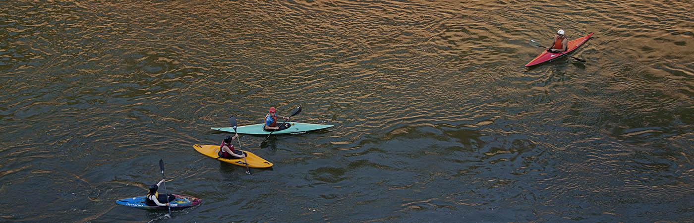 Four kayakers floating on a calm river.