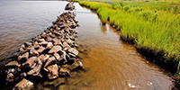Photo of rocky shoal courtesy of the Elizabeth River Project.