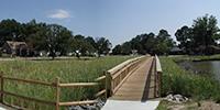 Image of wetland restoration.