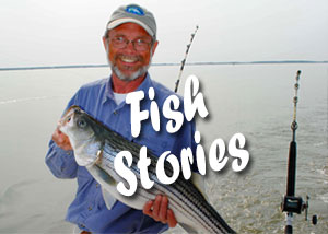 Sidebar link - Fish Stories