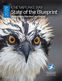 Cover of CBF's 2019 State of the Blueprint Report